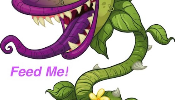 Feed me Facebook! Feed me! FEED ME NOW!!!